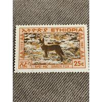 Эфиопия 1987. Simien Fox
