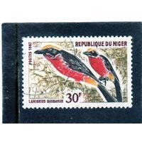 Нигер.  Mi:NE 151. Желто-коронованный Гонолек (Laniarius barbarus). Серия: птицы. 1967.
