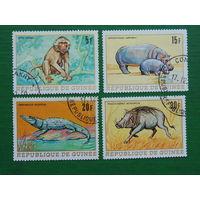Гвинея 1968г. Фауна.