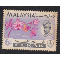 Марки Малайзия