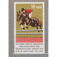 Лошади всадники фауна Спорт ГДР Германия 1974 год лот 1024 ЧИСТАЯ