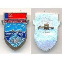 Калининград 1. Серия –  Лебедь в круге.