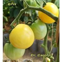 Семена томата Dr. Carolyn (Доктор Кэролин)