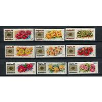 Фуджейра - 1969 - Дикие цветы - [Mi. 381-389] - полная серия - 9 марок. MNH.