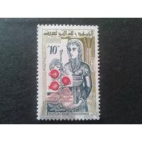 Тунис 1959 ветка фруктов