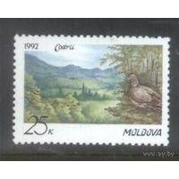 Заповедник Кодры Молдова (Молдавия) Фауна птица 1992 год чистая **
