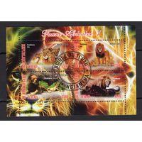 Чад - CTO - львы - животные - Африканские - Фауна - Частный выпуск - зубчатый - 2012