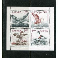 Латвия. Птицы Балтийского моря, блок