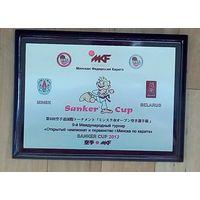 Минская Федерация карате-9-й Международный турнир-2013