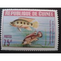 Гвинея 1964 рыбы