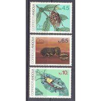 Ангола фауна насекомые