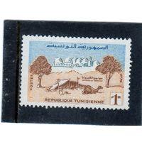 Тунис.  Mi:TN 517. Вокруг Кайруана.  Серия: Жизнь в Тунисе. 1959.