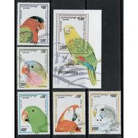 Камбоджа /1995/ Фауна / Птицы / Попугаи / Разновидности / ПОЛНАЯ Серия 5 Марок плюс Блок.