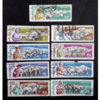 Монголия 1961 г. Домашний скот. Животные. Фауна, полная серия из 9 марок #0193-Ф1