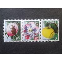 Словения 2000 стандарт, сцепка желтое яблоко