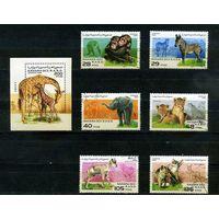 Сахара, 1996г. дикие животные, 6м. 1 блок
