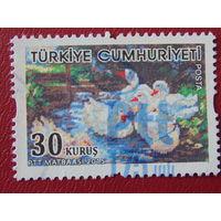 Турция 2015г.