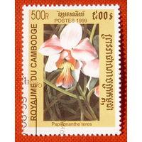Камбоджа. Цветы. ( 1 марка ) 1999 года.