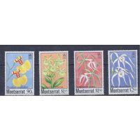 [1485] Монтсеррат 1985. Флора.Цветы.Орхидеи.