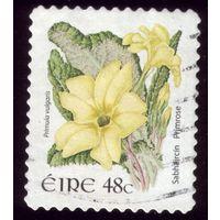 1 марка 2004 год Ирландия Флора 1605