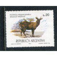 Аргентина. Южноандский олень