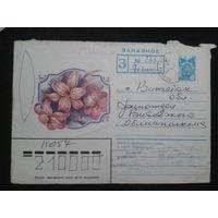 1984 лилии прошло почту заказное