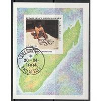Малагасийская Республика (Мадагаскар) /1993/ Искусство Страны / Ремесло / Блок