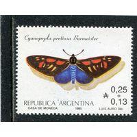 Аргентина. Бабочка. Мотылек