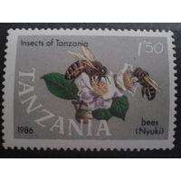 Танзания 1987 пчелы