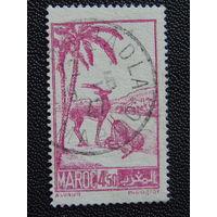 Марокко 1942 г.
