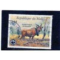 Мали.Ми-1079. Гигантская антилопа Эланд. Серия: Мир дикой природы: Вальделен. 1986.