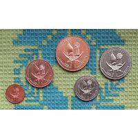 Катар набор монет 1, 5, 10, 25, 50 дирхам, UNC.