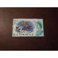 Багамские острова 1965 г.Абудефдуф обыкновенный или сержант - майор.Номинал 1 шиллинг.