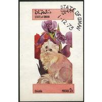 Кошки. Оман. 1973. Блок. Гаш.