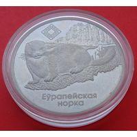 1 рубль Красный бор. Европейская норка. 2006! ВОЗМОЖЕН ОБМЕН!