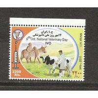Иран 2011 Ветеринария. Фауна. Коровы