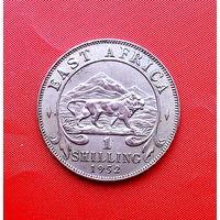 80-19 Восточная Африка, 1 шиллинг 1952 г.