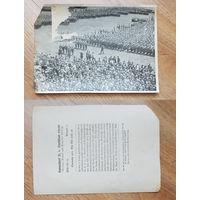 Германия Третий рейх 1931. Коллекционная карточка (8)