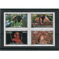 Панама. Местные виды фауны, квартблок