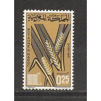 Марокко 1966 Колос