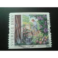 Швеция 2005 в саду