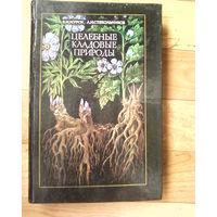 Целебные кладовые природы-1979-271стр. и 1990-(1и2-е издание)