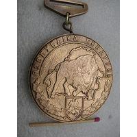 Медаль. Призёр Республики Беларусь. тяжёлая, Погоня