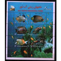 2004 Иран фауна Рыбы блок**