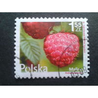 Польша 2011 стандарт, малина