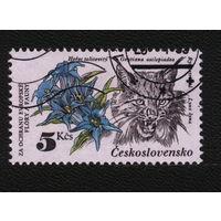 Кошки. Чехословакия 1983. Рысь. Марка из серии. Гаш.