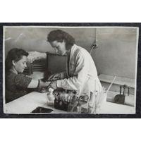Фото трудовых будней сотрудников Белорусского научно-исследовательский института переливания крови. 1950-е. 11х17 см.
