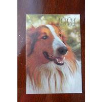 Календарик на 1991 г. Собака